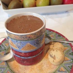 Raw Vegan Hot Chocolate Drink Recipe
